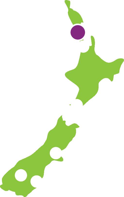 Nz Rent A Car Auckland City Location